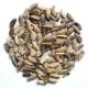 РАСТОРОПША, семена фермерские, экологически чистые, КФХ ДИДО, Дагестан, 100 гр